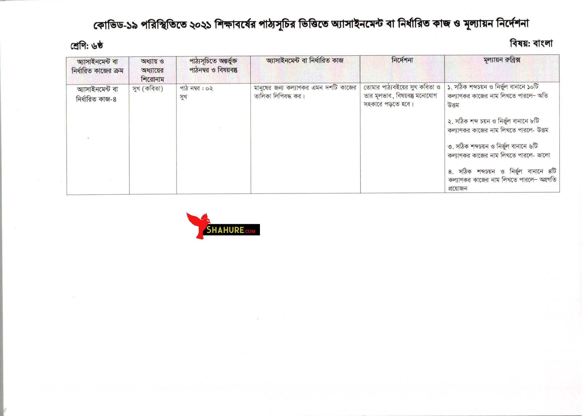 Class 6 Bangla Assignment Answer 13th Week
