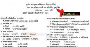 DDM Exam Question Solution
